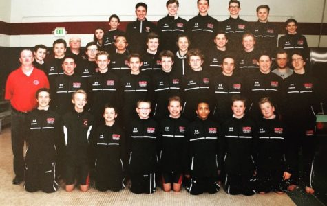 Boys Swim and Dive Break State Record