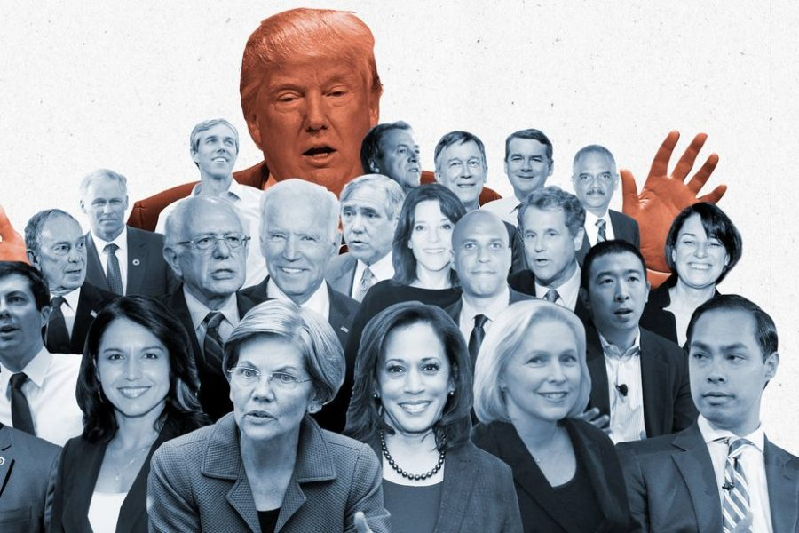 An+image+of+some+of+the+candidates+that+have+officially+announced+running.+