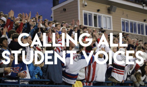 Students at the homecoming football game cheer for the team.