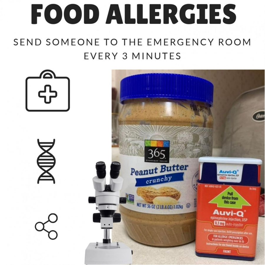 How come there are so many students living with food allergies?