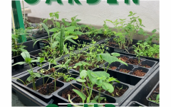 Garden club continues to grow throughout the school year